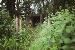Best Options For Garden Maintenance In Auckland!