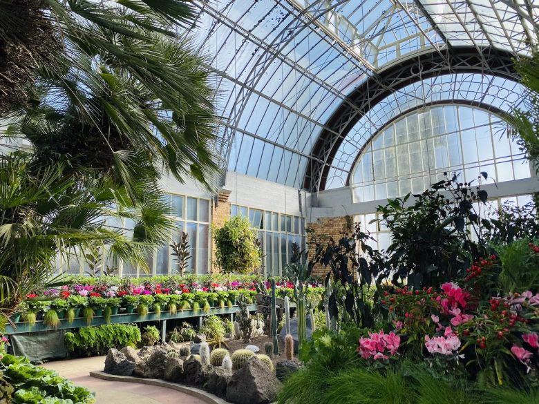 The 14 Most Beautiful Gardens In Auckland You Can Visit!